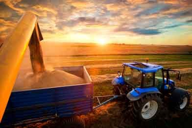 USDA Projects Farm Income at 7-Year High